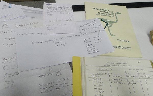 Notes towards instructions for the moa lab.